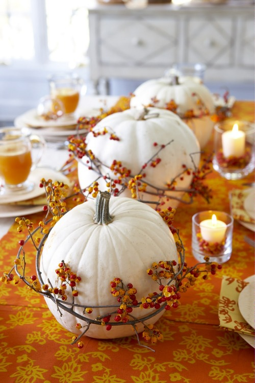 white pumpkins with bittersweet